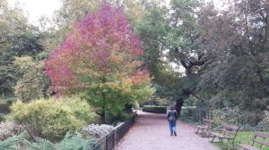 Battersea Park in autumn - one of my favourite London places